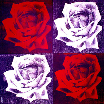 Four Roses (Purple)